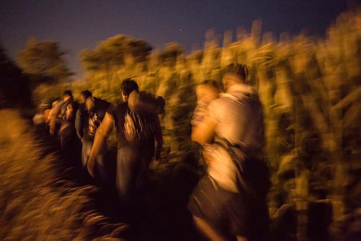 Hungary, July 15, 2015. Ahmad and his group avoided the police by running through the fields and between the houses inside the border area.